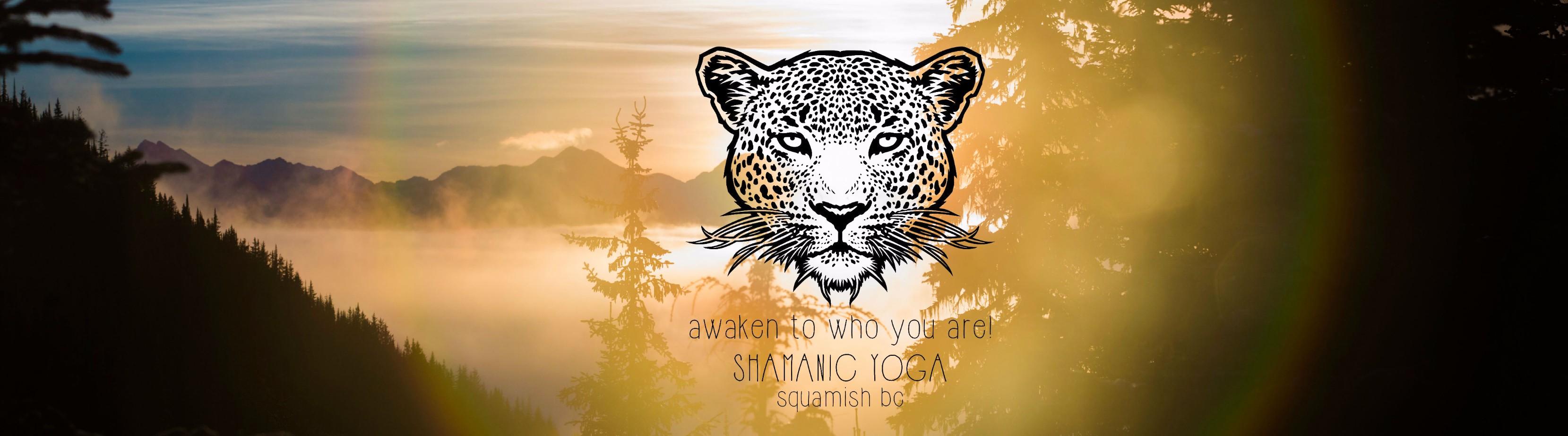 sunglaze jaguar